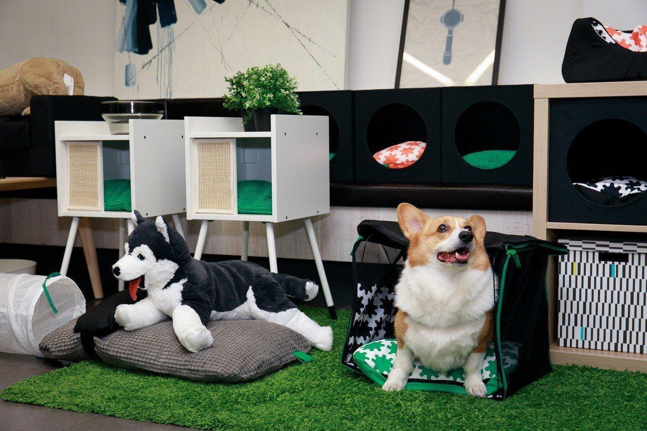 LURVIG系列以寵物的觀點出發,結合產品設計師、獸醫師及風險專家的專業知識,發...