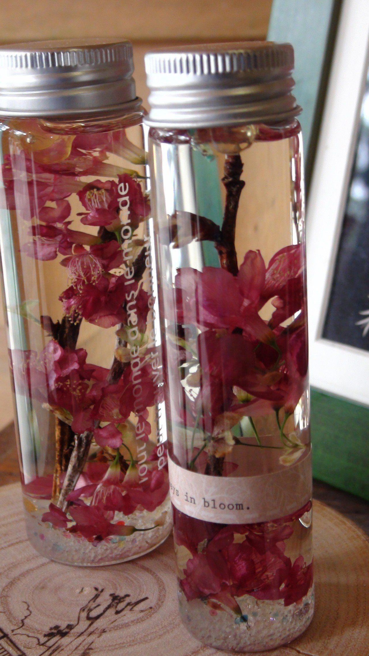 永久油保存的櫻花。記者謝恩得/攝影