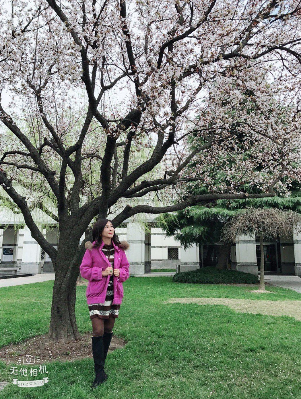 吳淡如在上海中歐國際工商學院裡享受學習人生。記者葉君遠/上海攝影
