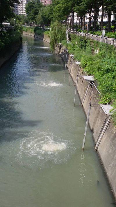 愛河會變色,高雄市水利局和環保局引入海水並加強曝氣,希望降低臭味。圖/高雄市環保...
