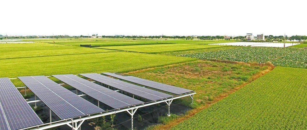 博立光電智慧農業電廠。 博立光電/提供