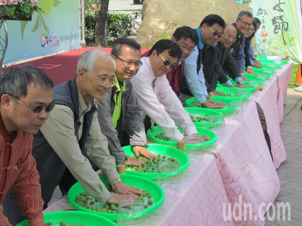 信義鄉農會今天邀集來賓,示範脆梅DIY的每一步驟。記者張家樂/攝影