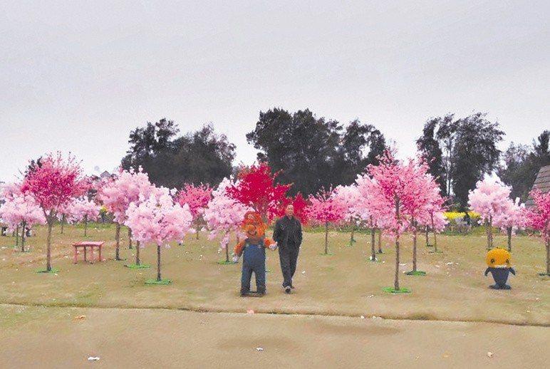 日前溫州九村生態莊園發出舉辦櫻花節的推廣文章,圖文並茂展示櫻花海洋、櫻花大道等主...