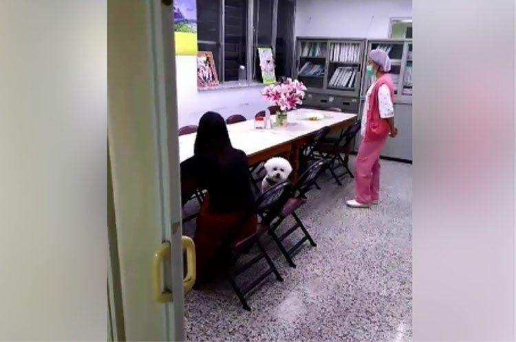 圖左身穿黑衣便服的護理師攜愛犬進醫院,保全勸阻無效後錄影存證。圖擷自爆料公社