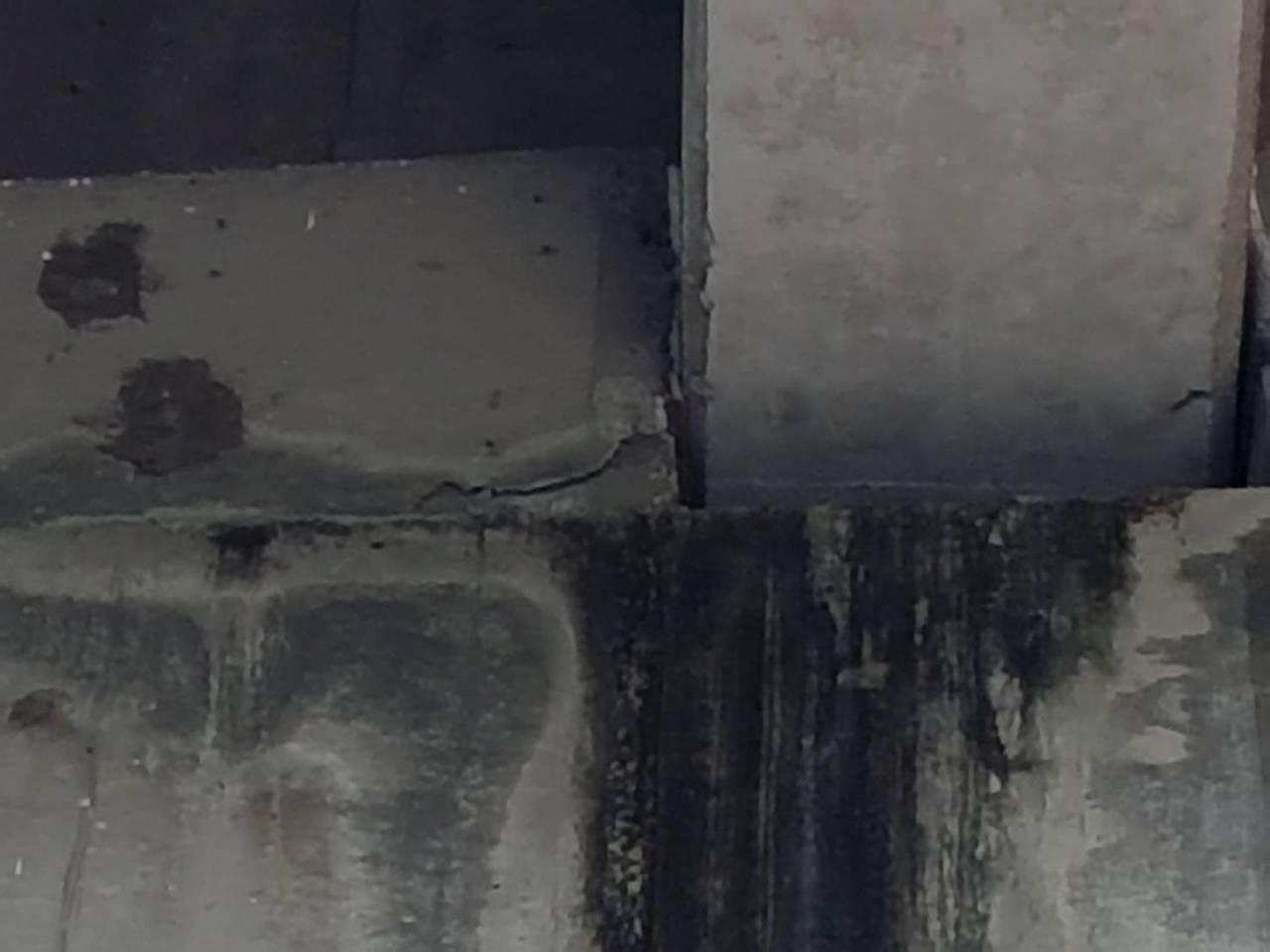 編號P7的橋柱和橋梁可能因地震受損。圖/讀者提供