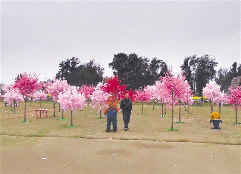 大陸浙江靈昆九村生態園用塑膠假花布置成各式主題景觀,民眾質疑卻一度聲稱沒說是真櫻...
