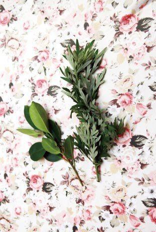 榕樹枝、芙蓉、艾草都有祛病避邪之效。