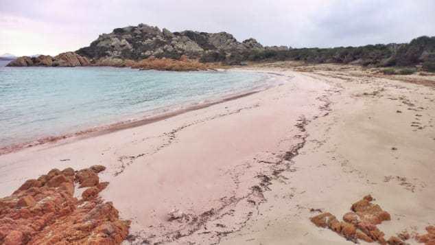 莫蘭迪拍攝布德立島上的玫瑰沙灘,在社群媒體上分享。莫蘭迪臉書
