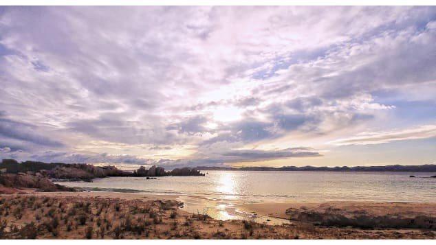 莫蘭迪拍下布德立島的美景,在社群媒體上分享。莫蘭迪臉書