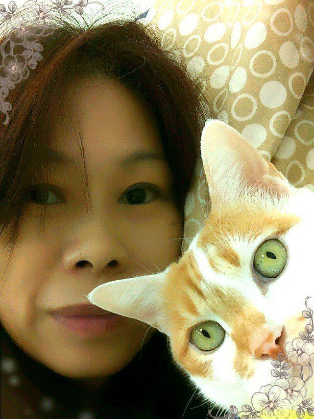 花蓮雲翠大樓主委林葳臉書大頭貼,就是與愛貓「喵喵」的合照。圖/翻攝臉書