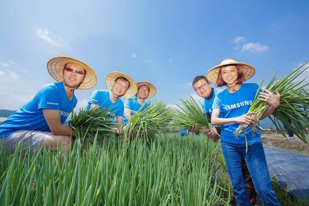 台灣三星三度舉辦「三星稻田認養公益計畫」志工活動,長官們率領員工擔任一日志工親自...