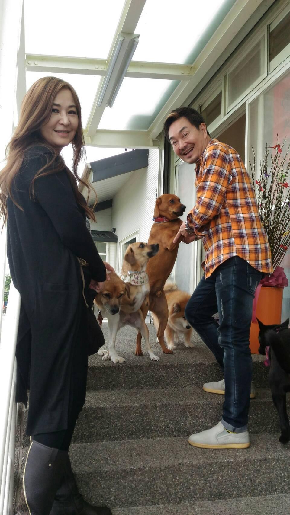 楊懷民帶張富美參觀收容救治受虐狗的狗園。圖/倪有純提供