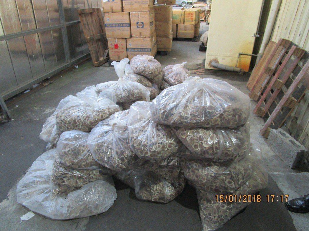 警方發現35包、總計重173.5公斤的乾鹿茸切片。記者林伯驊/翻攝