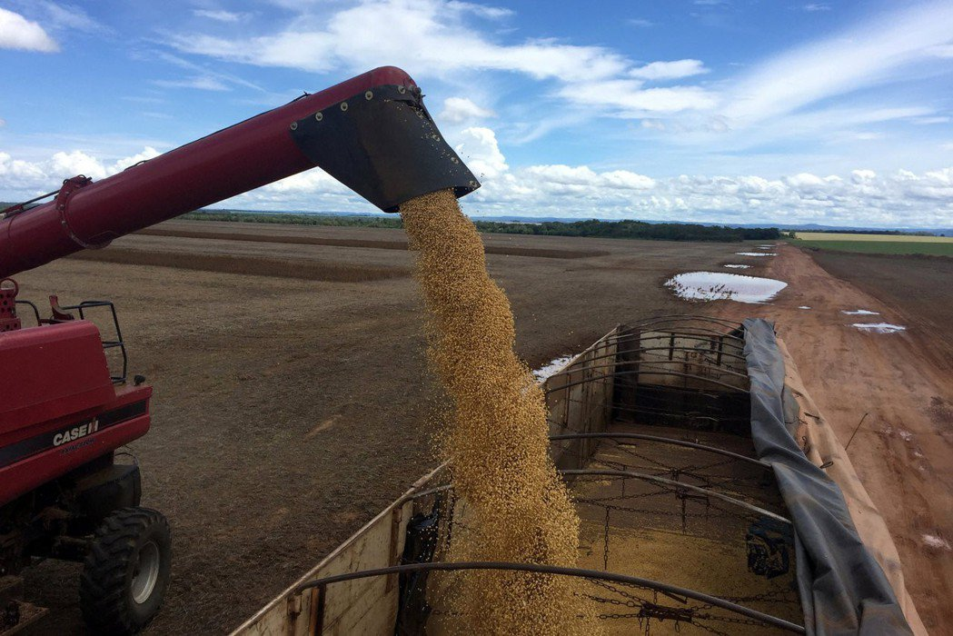 有分析人士認為,中國尚未將大豆、高粱、波音飛機等美國對華最大宗出口產品納入報復名...