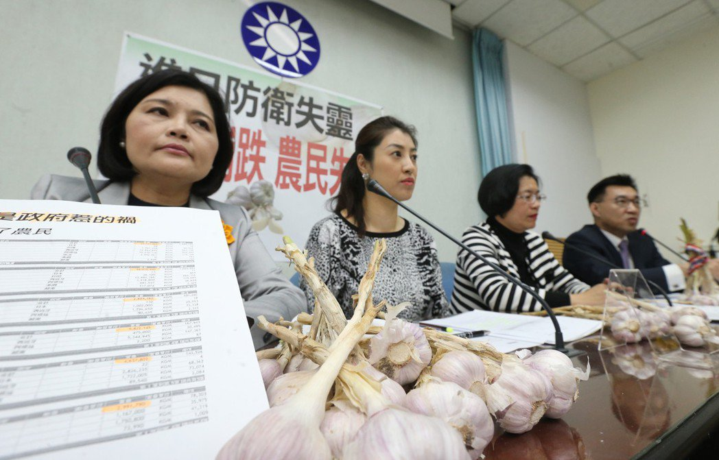 國民黨立委昨為台灣蒜農發聲,指責政府單位放任進口蒜頭傾銷打亂國內蒜價,要求農政單位協助蒜農獲利。 聯合報系資料照