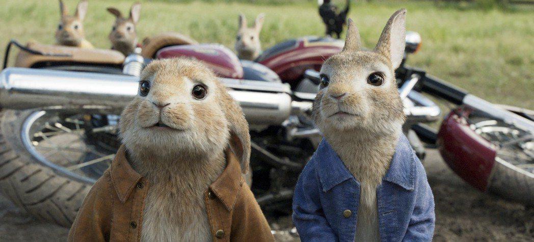 「比得兔」在歐美締造票房佳績,春假在台盛大上映。圖/索尼提供