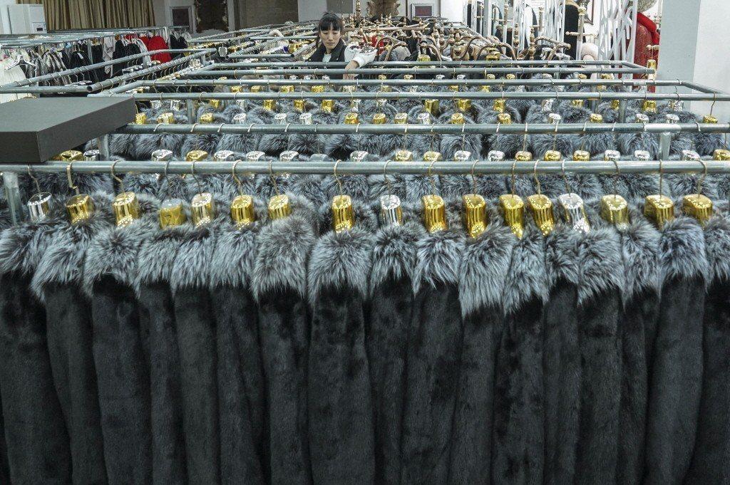 中國非但已是全球最大的皮草動物養殖國,其消費市場,更趨動了全球的皮草貿易。  圖...