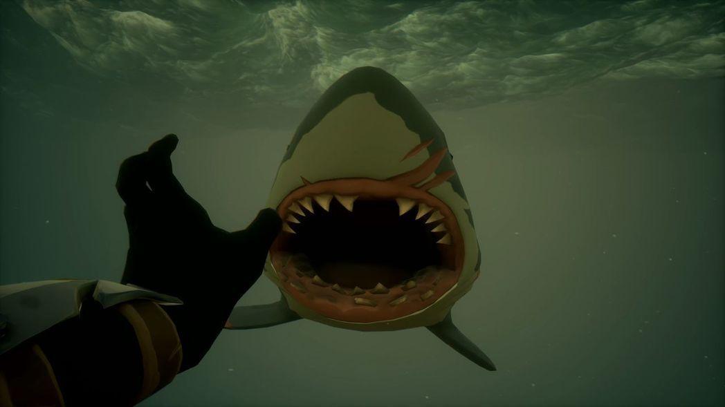 雖然鯊魚讓遊戲更加刺激,卻也是海中唯一具有攻擊性的生物。