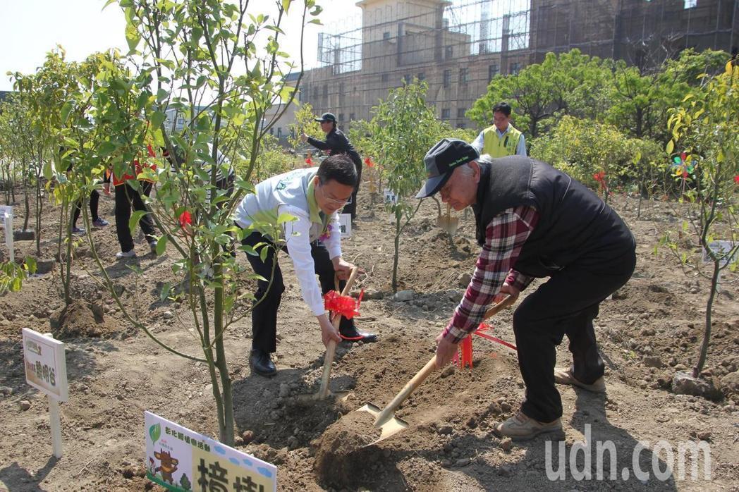 植樹對環境保護,有相當大的益處。圖/聯合報系資料照片
