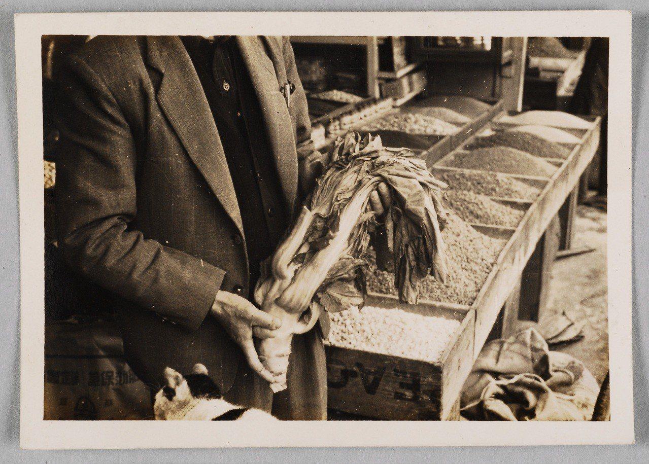 省去冷藏的程序,靠著乾燥加工時間的長短,芥菜衍生了許多客家料理譜系。(館藏號20...