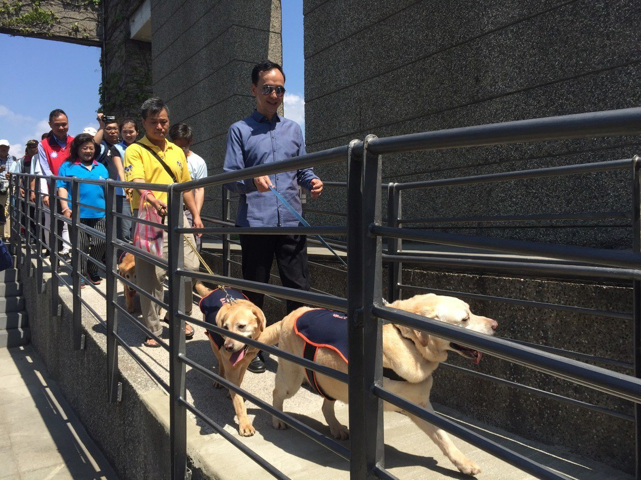 朱立倫今天牽黃金獵犬遊街。記者張曼蘋/攝影