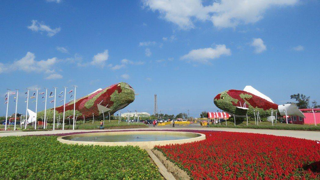 桃園農業博覽會新屋基地展場入口處,一對8公尺高錦鯉綠雕裝置已完成布置。記者張弘昌...