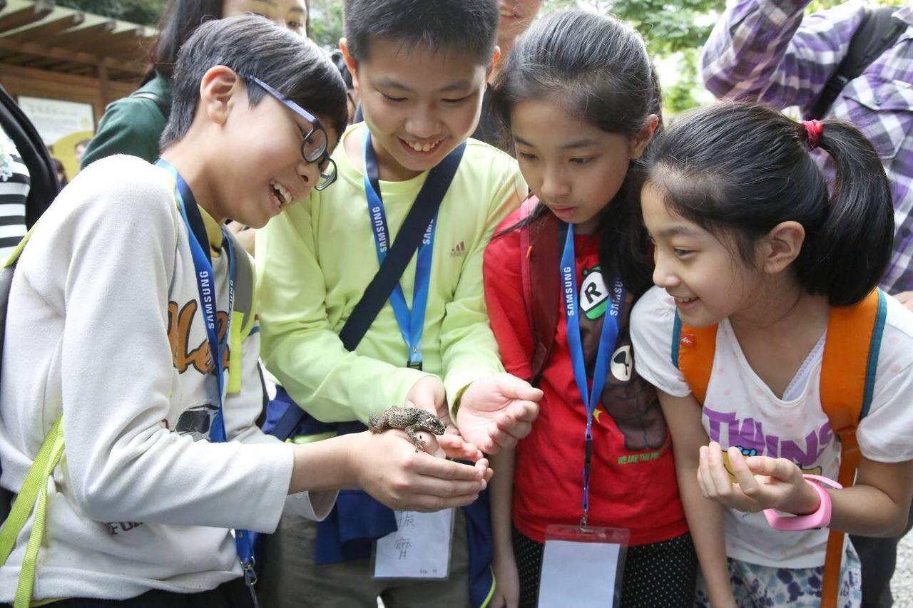 「聽蛙講,跟蛙走」課程帶領基隆仁愛國小智慧教室6年級學童走出課堂,實地探索青蛙生...