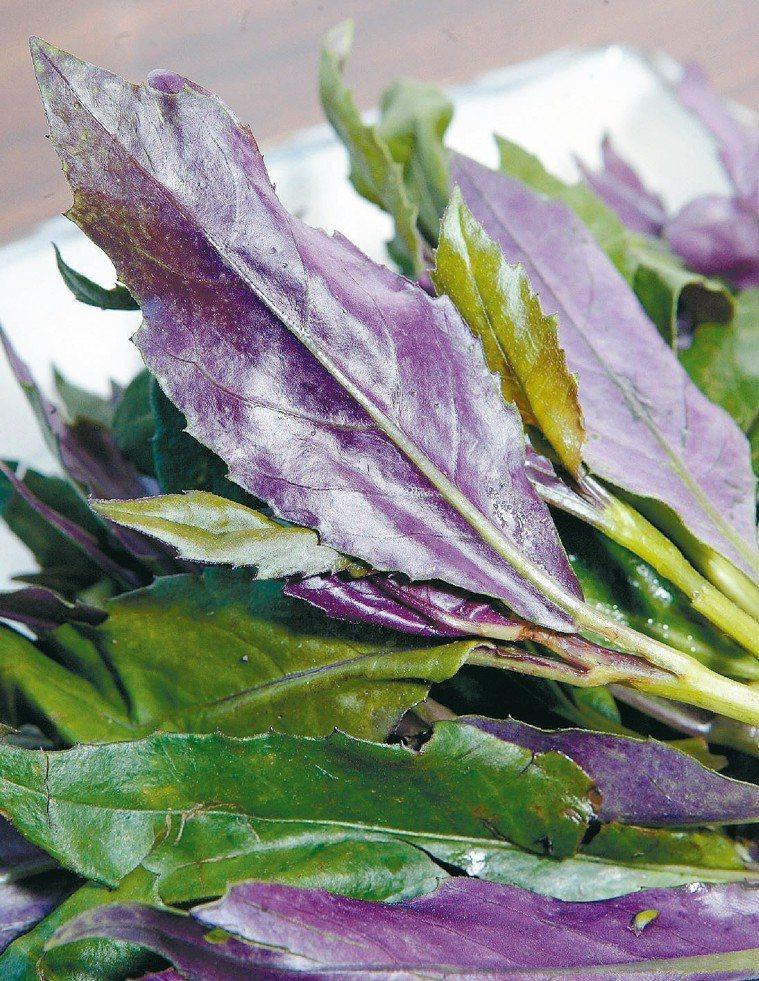 路流傳紅鳳菜含某成分,有毒性,甚至會導致癌症?真相是:正常攝食量,不會有肝毒性。