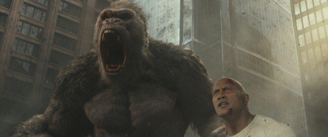 巨石強森將帶來超猛災難新片「毀滅大作戰」。圖╱華納兄弟提供