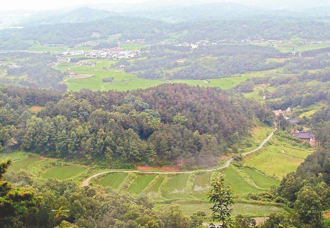 南韓忠清南道燕岐金伊村的空中鳥瞰圖。 路透資料照片
