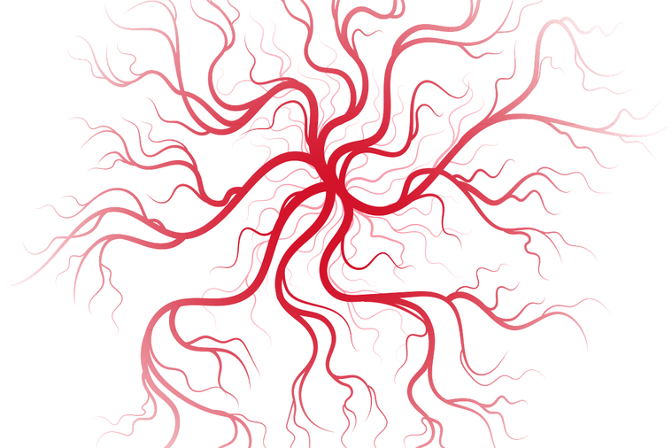 """如果把人體比作一台機器,血液就相當於""""燃油"""",而血管就是輸送管道。在心臟""""發電機..."""