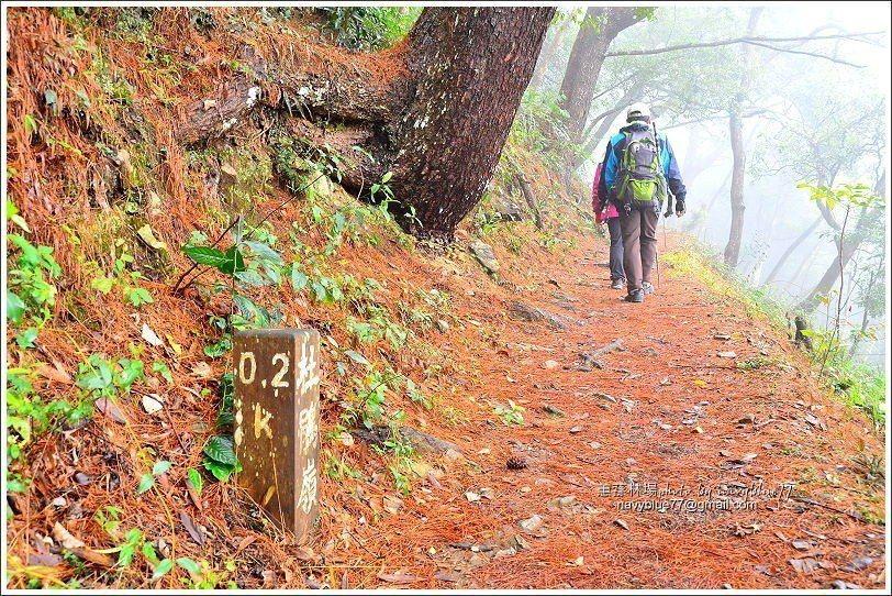 ↑梨園山莊是杜鵑嶺步道的起點。步道每200公尺就有一支木樁標示里程。