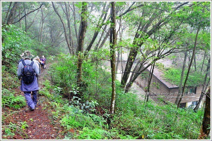 ↑由此接回到梨園山莊,續往觀景台步道。