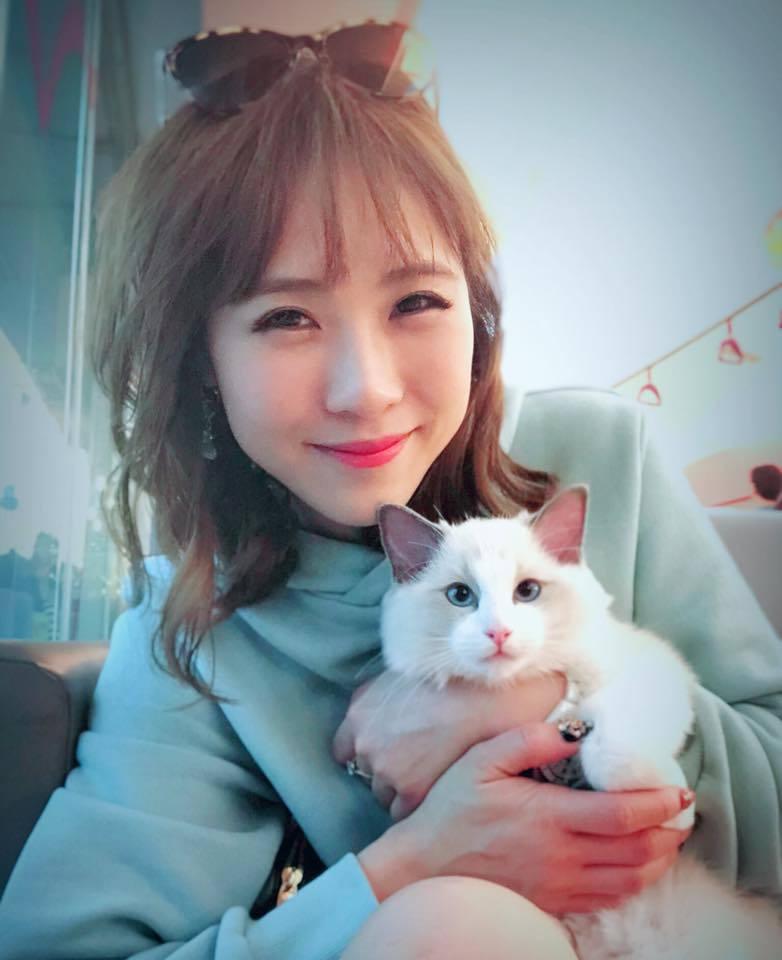 吳申梅清明假期帶貓咪去結紮。圖/摘自臉書