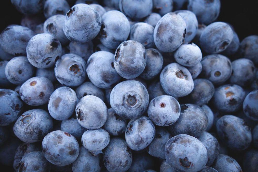 藍莓示意圖。 圖/元氣周報