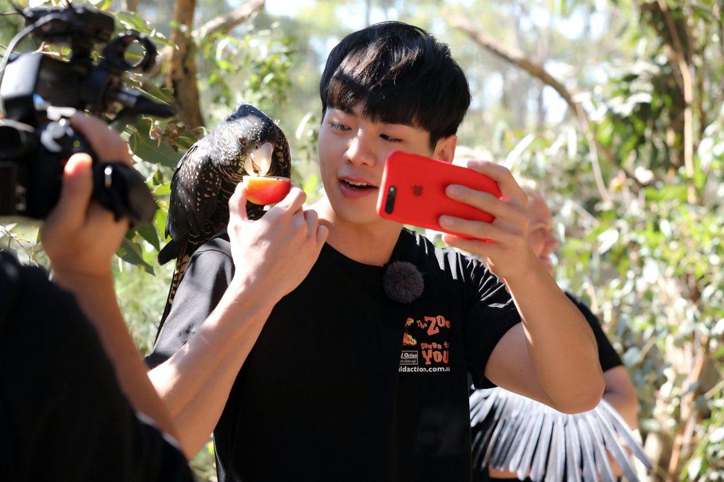 禾浩辰為了陪閨蜜鬼鬼,一同前往澳洲墨爾本加入實境秀節目「閨蜜的完美旅行」。圖/群...
