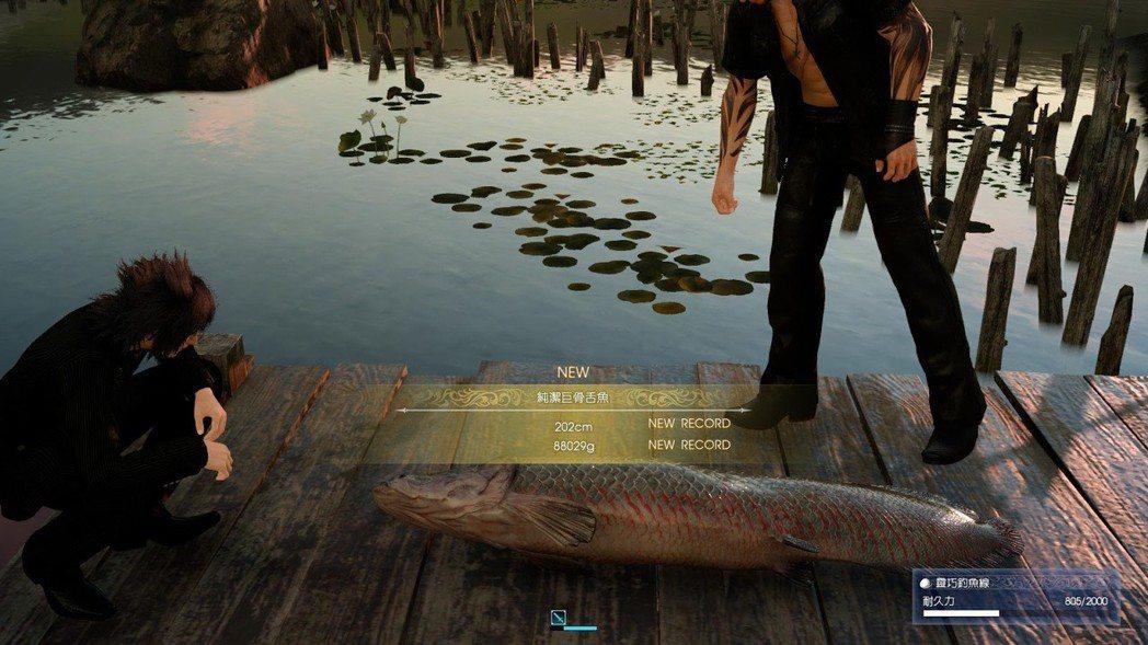 為了釣起傳說的湖之主,筆者與牠奮戰五分鐘,終於釣起這條巨無霸!