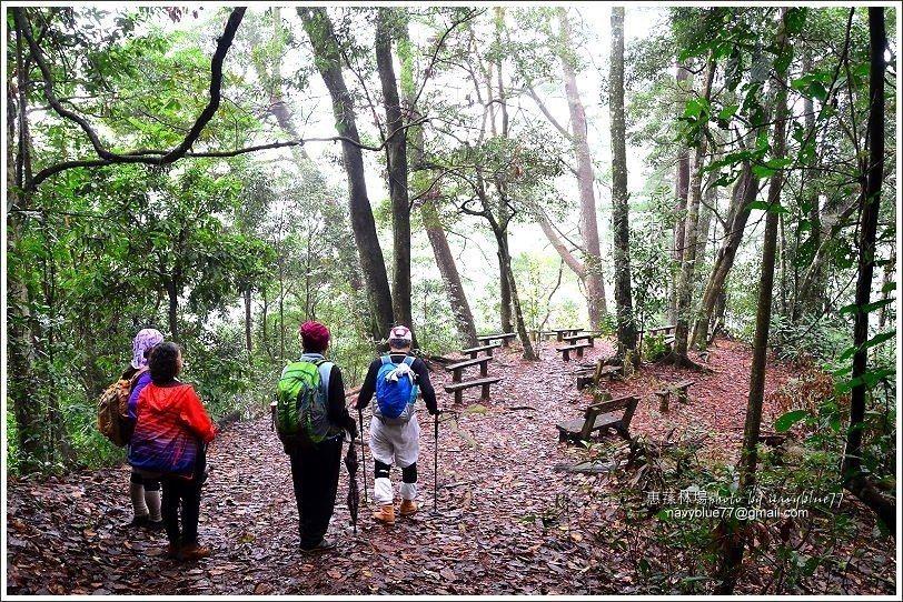↑山嵐小徑上的松林教室。