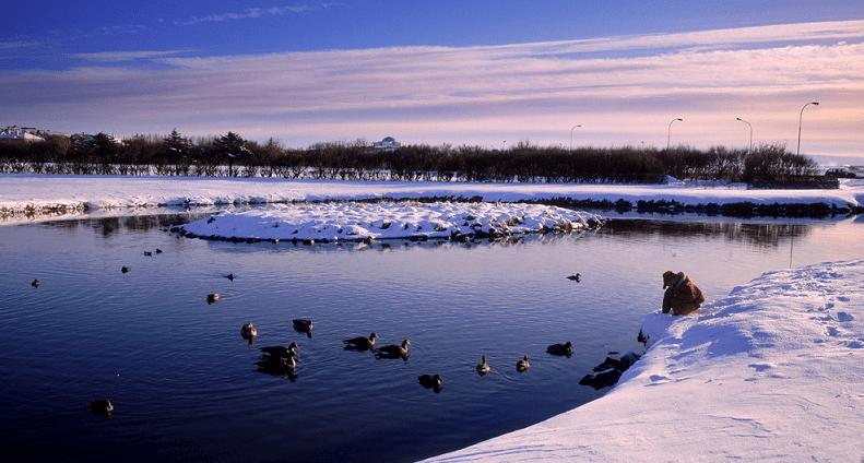 托寧湖 icelandtravel.is