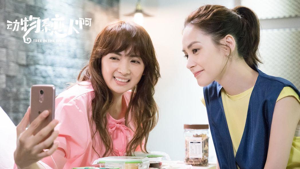阿喜(左)在「動物系戀人啊」戲中和女主角「阿嬌」鍾欣潼飾演好朋友。圖/「動物系戀