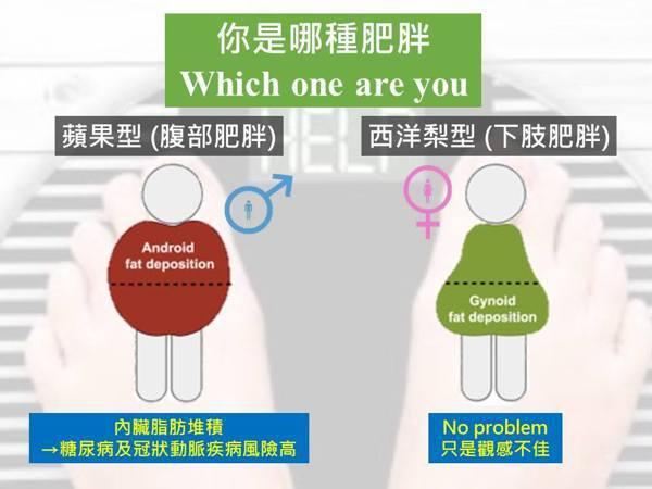 你是哪種型的肥胖?取自運動營養團隊臉書