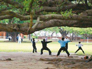 成功大學「榕園」,許多民眾清早來運動。