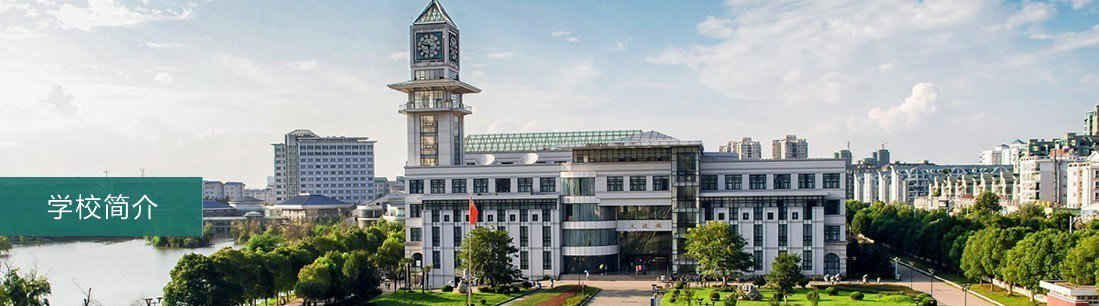 中南財經政法大學是大陸「雙一流」大學之一。圖/取自該校官網