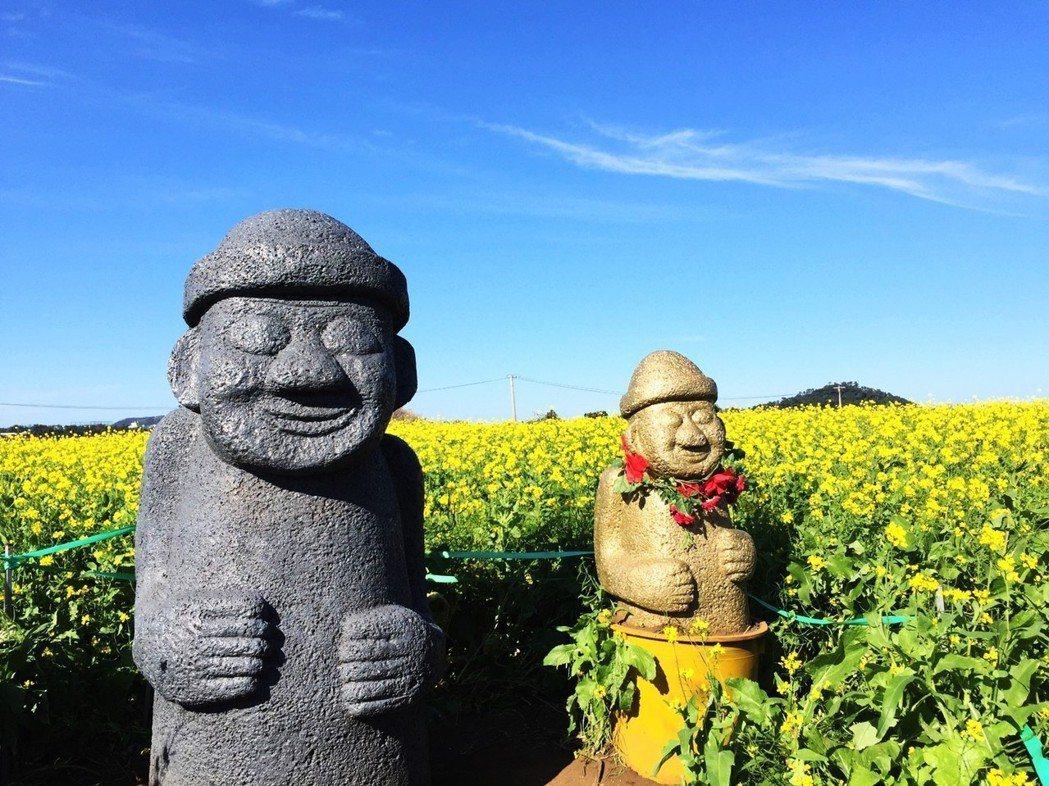 「但濟州之春,總會有如油菜花一般怒放的時候的吧...」 圖/聯合報系資料圖庫