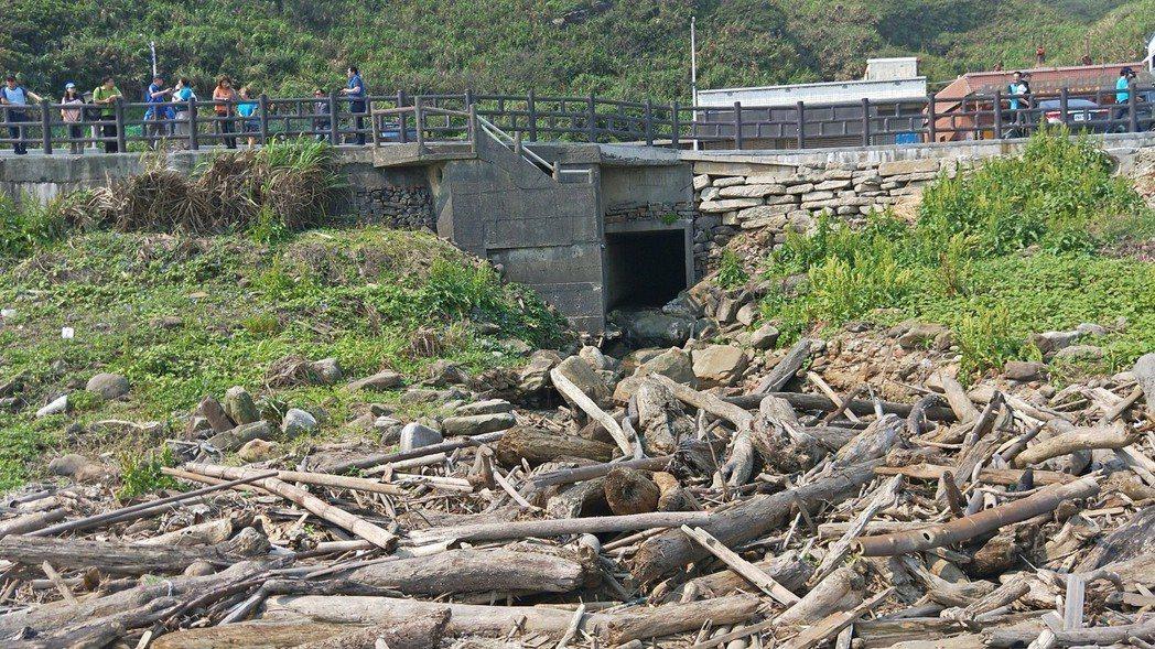 外木山海域美麗卻暗藏大批漂流木與垃圾被批醜,議長宋瑋莉今天前往會勘解決。記者游明...