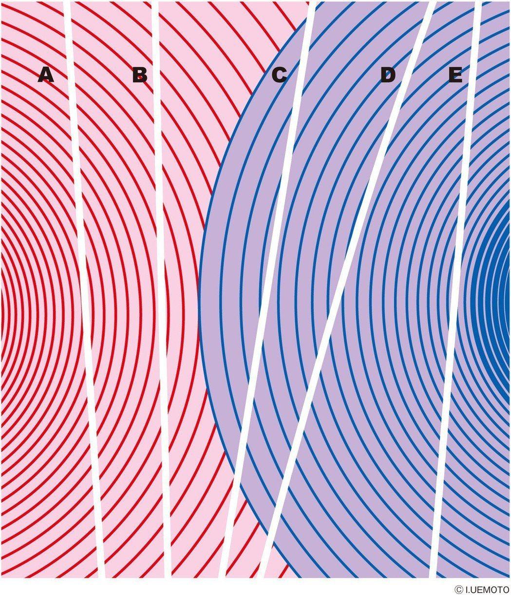 哪1條不是直線?A~E的5條線中,有一條不是直線,請問是哪一條呢? 圖摘...