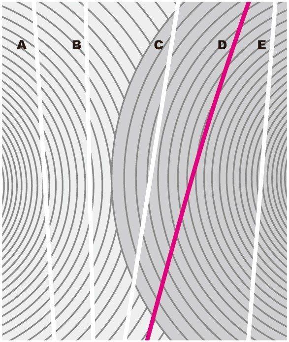 【解答】 圖摘自瑞麗美人國際媒體出版《1天1圖的視力回復法》非