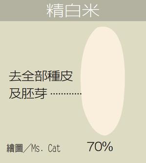 精白米 繪圖/Ms. Cat