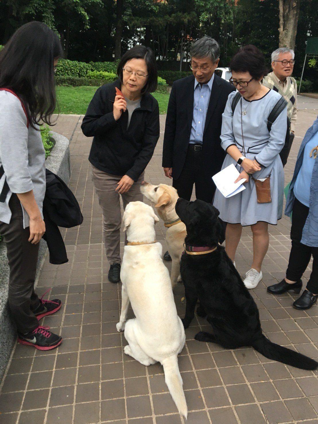 蔡英文總統(左二)於官邸接見民間團體。圖/環團提供