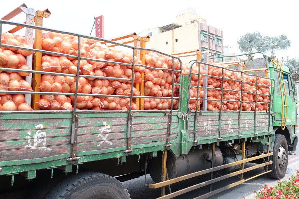 屏東縣政府發起企業認購洋蔥,獲得熱烈響應,總計購買6千袋洋蔥運往台北。 聯合報系...
